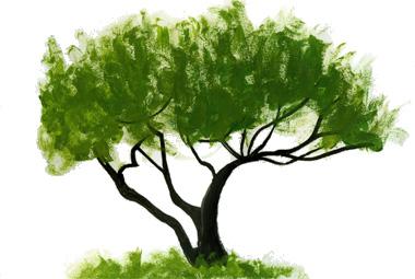 treeleave
